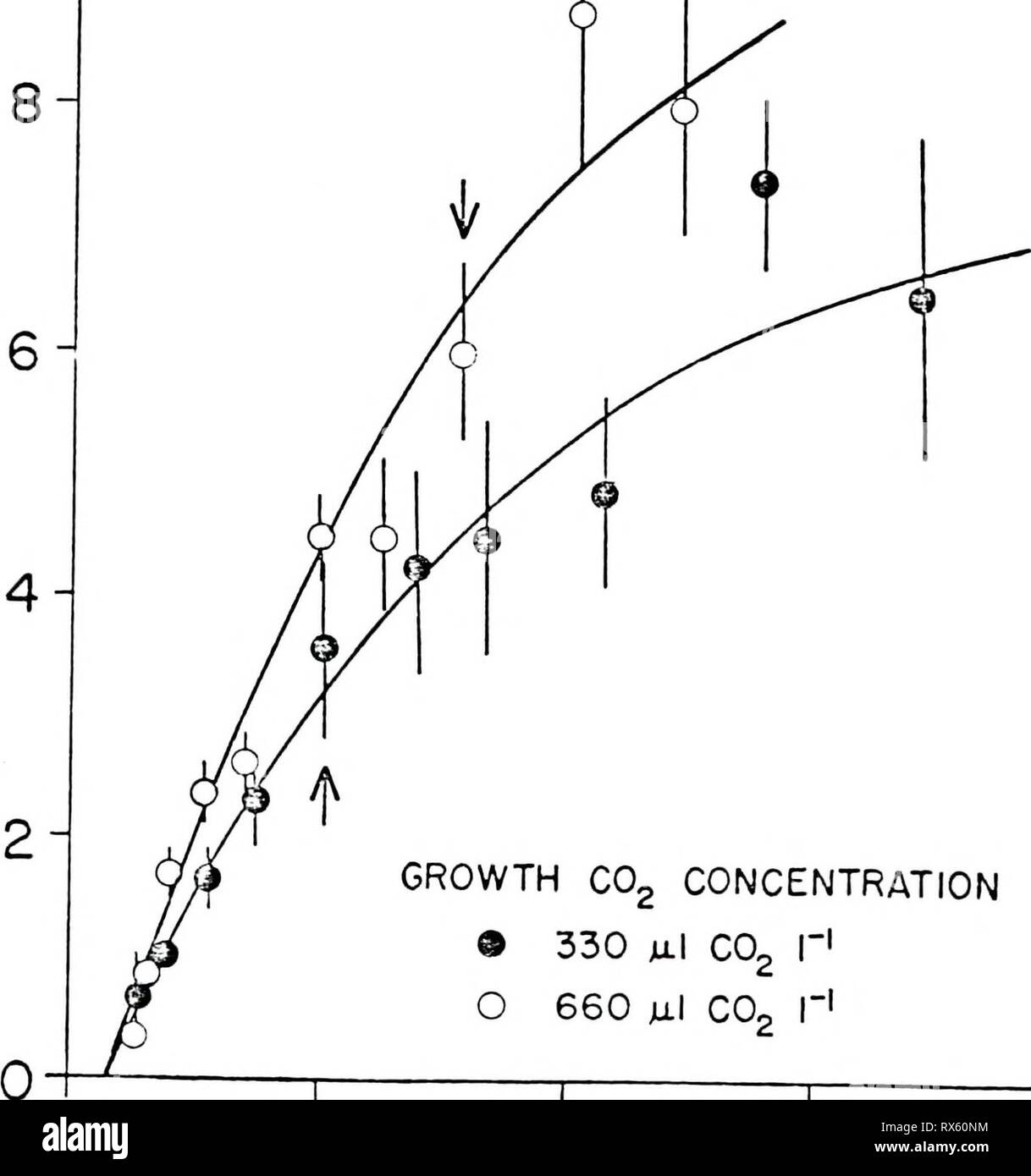 Effects of carbon dioxide on Effects of carbon dioxide on the physiology and biochemistry of photosynthesis in soybean effectsofcarbond00camp Year: 1986  GROWTH C02 CONCENTRATION ® 330 julI co2 r1 660 Ml C02 I'! B   GROWTH C02 CONCENTRATION 9 330 ju.1 co2 I-1 O 660 ul co2 r1 0 200 400 600 800 INTERCELLULAR C02 CONCENTRATION (jjj CO, I'1) - Stock Image