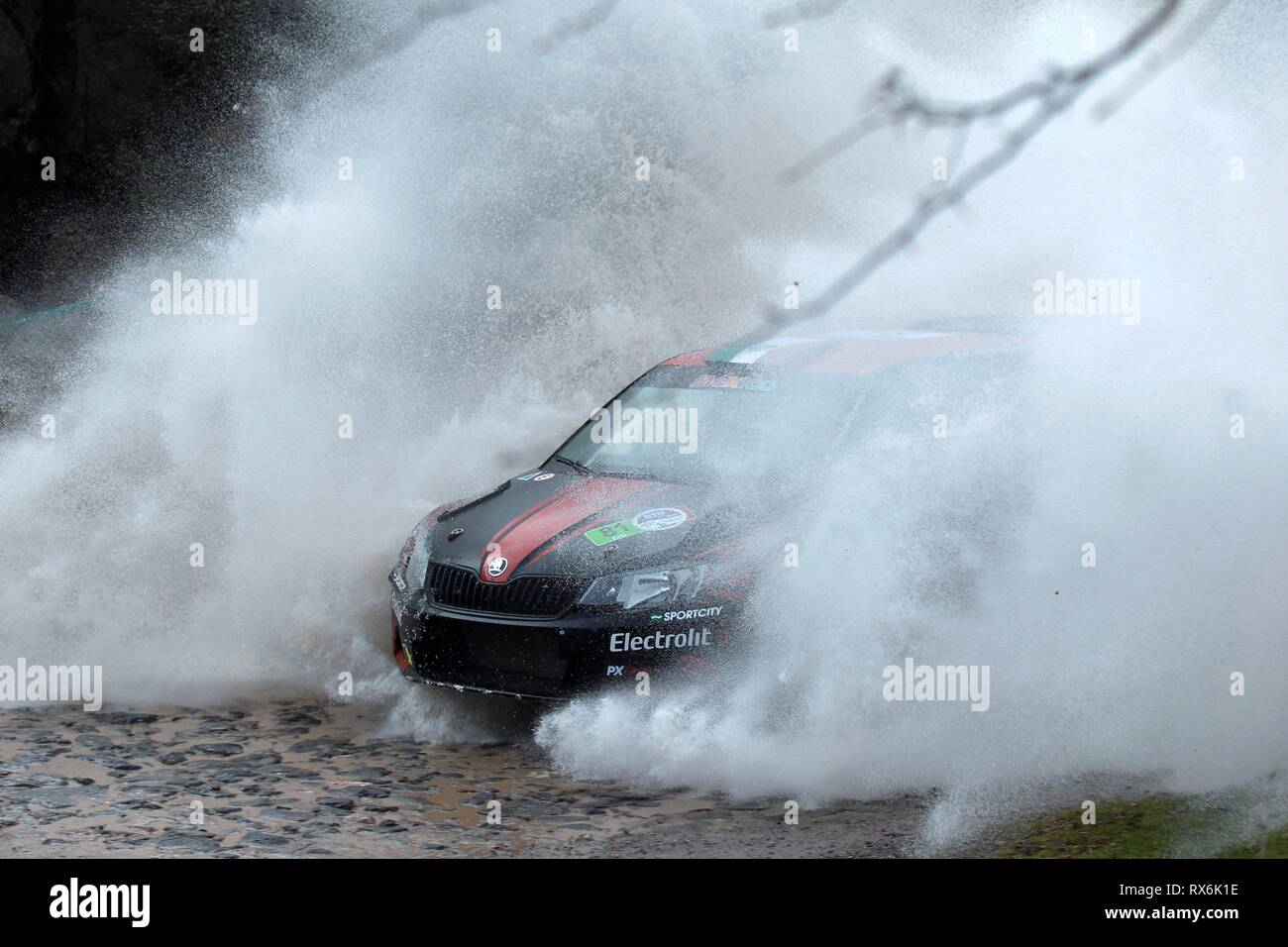 Mexico City, Mexico. 09th Mar, 2019. Mexican driver Ricardo Trivino and Spanish co-pilot Marc Marti drive their Skoda Fabia R5during the first stage of the Rally Guanajuato Mexico, Leon, Mexico, 08 March 2019. Credit: Francisco Guasco/EFE/Alamy Live News - Stock Image