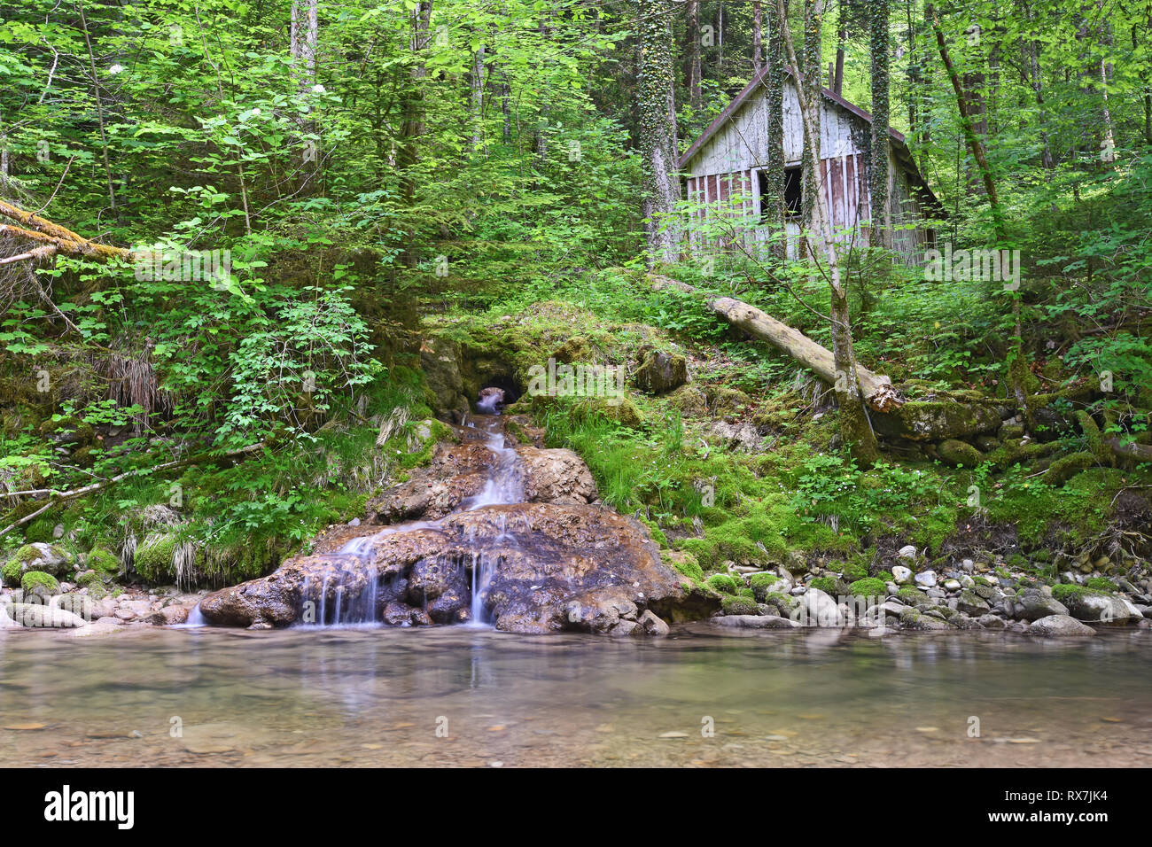 Old wooden hut next to a little stream in deep forest. Bavaria, Germany Stock Photo