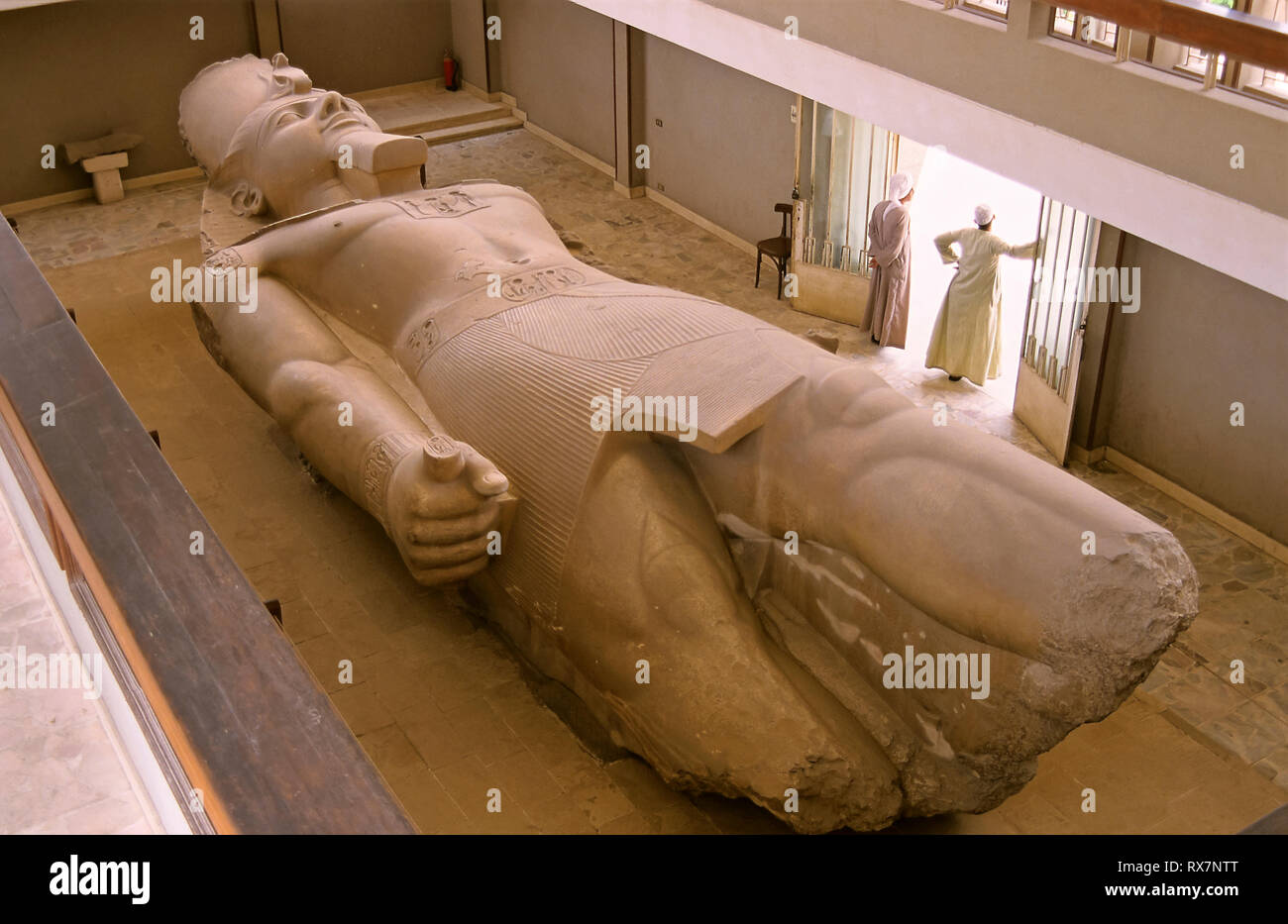 Colossal statue of Ramses II, lying on the ground. Ruins of Memphis. Egypt. Africa Stock Photo