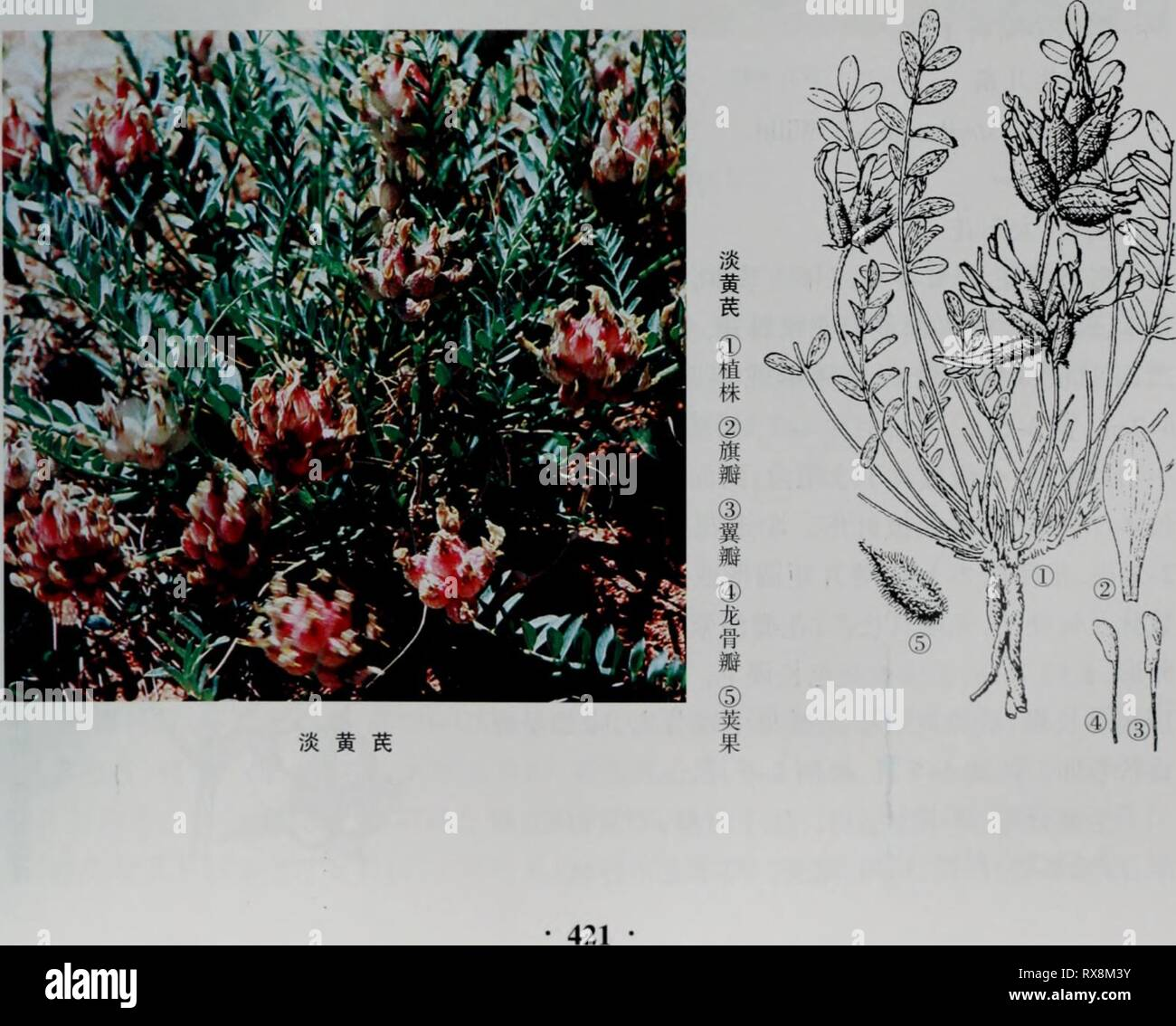 17 9 2007 Stock Photos & 17 9 2007 Stock Images - Alamy