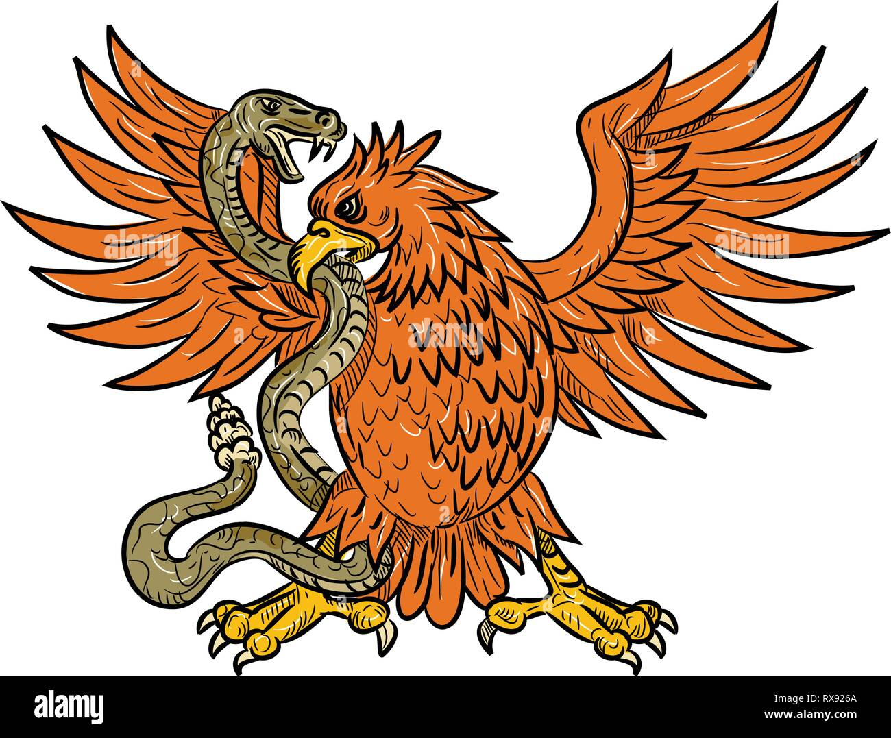 Drawing sketch style illustration of an American golden eagle, Mexican eagle or northern crested caracara grappling a rattlesnake, viper, snake or ser Stock Vector