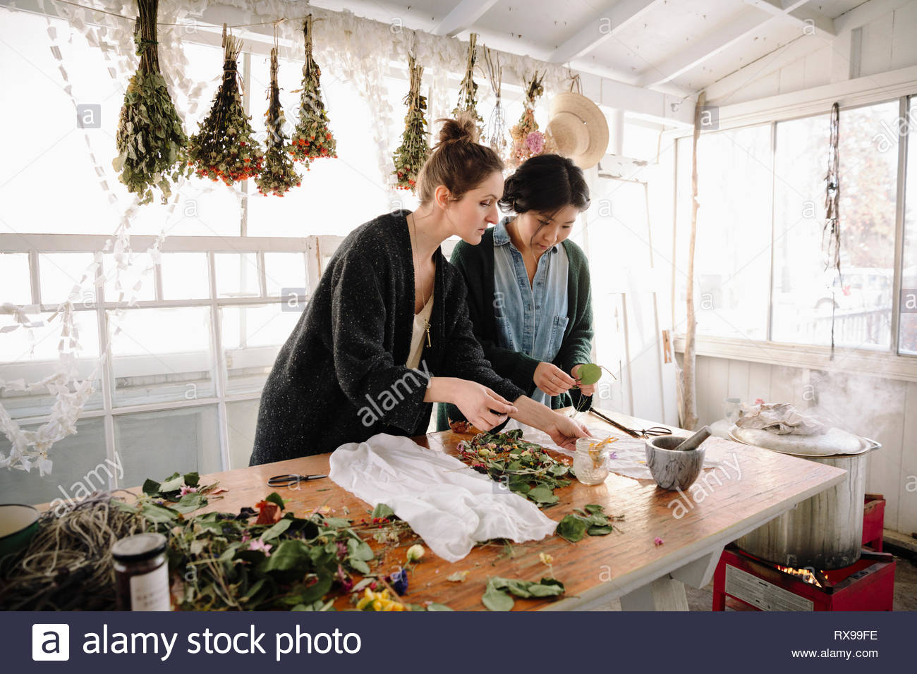 Women drying flowers for paper making in studio - Stock Image