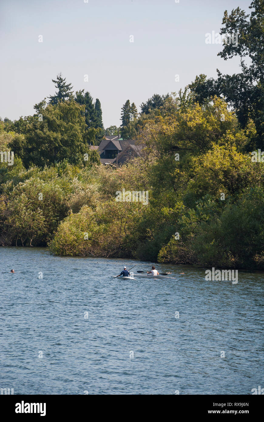 Two kayakers and a swimmer in Green Lake in Seattle, Washington. - Stock Image