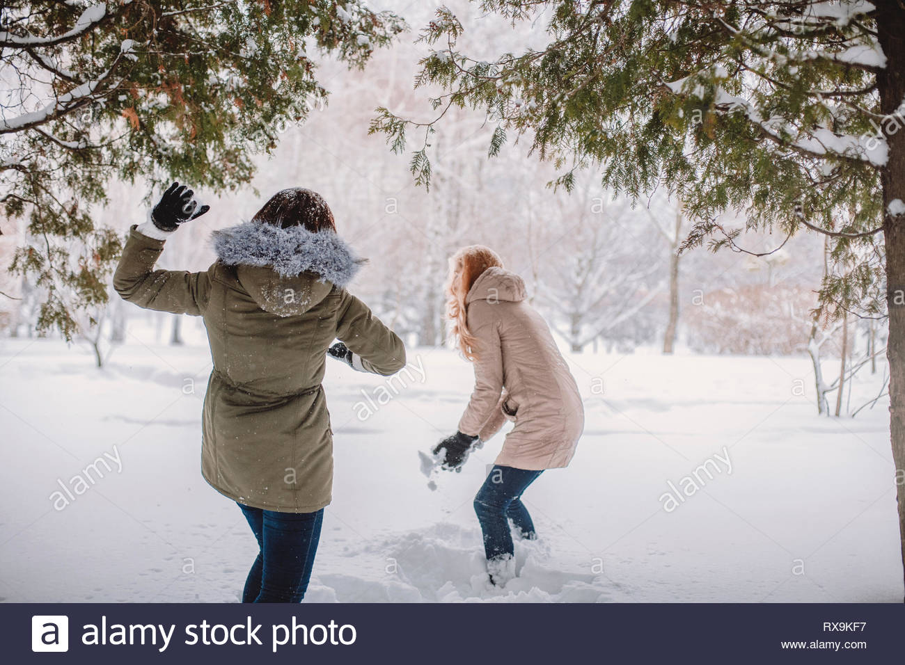 Rear view of playful woman throwing snow on wife in park - Stock Image