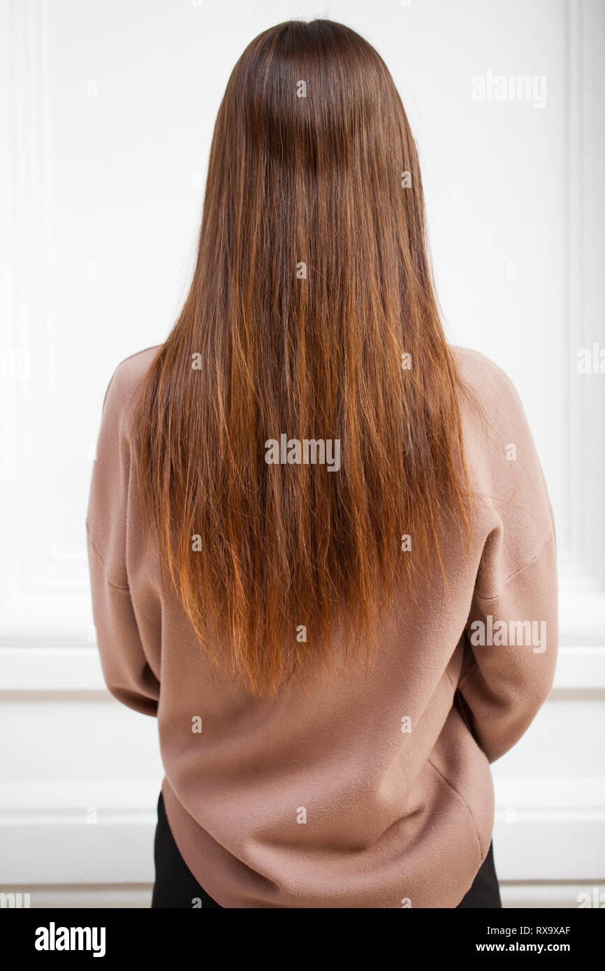 Female long wavy hair, back view, brunette hairstyle, indoor Stock