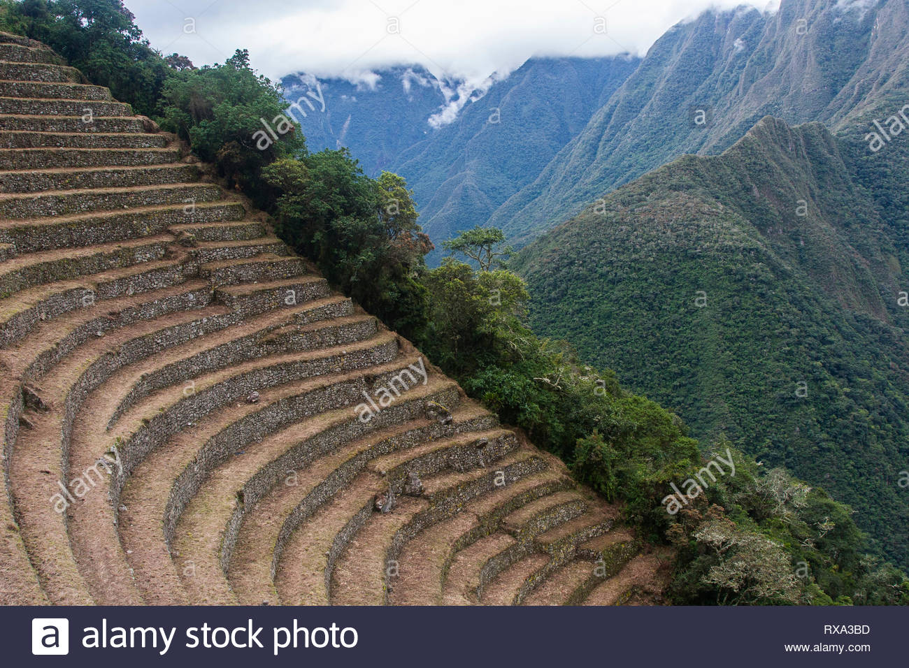 Old ruined terraced field against Andes mountains - Stock Image