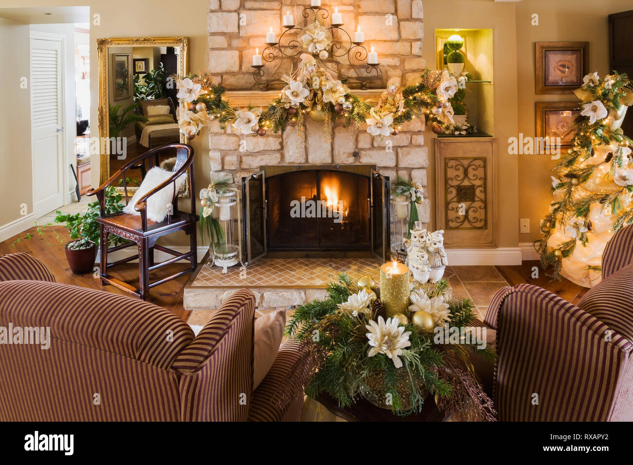 Two upholstered sitting chairs in front of natural cut-stone wood burning fireplace with Christmas decorations in the living room inside an old renova - Stock Image