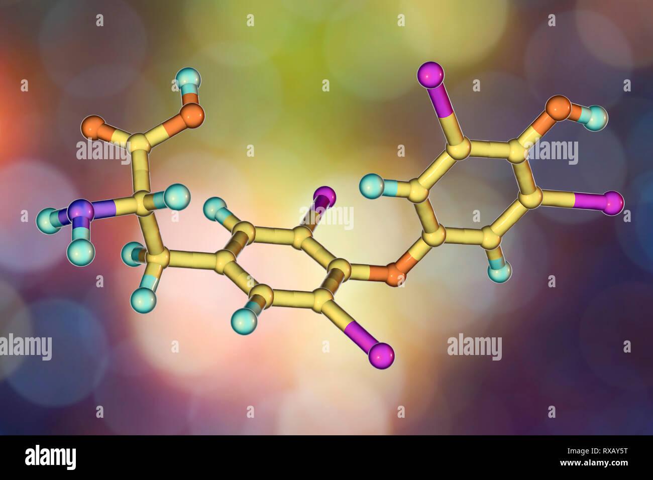 Thyroxine hormone, molecular model Stock Photo