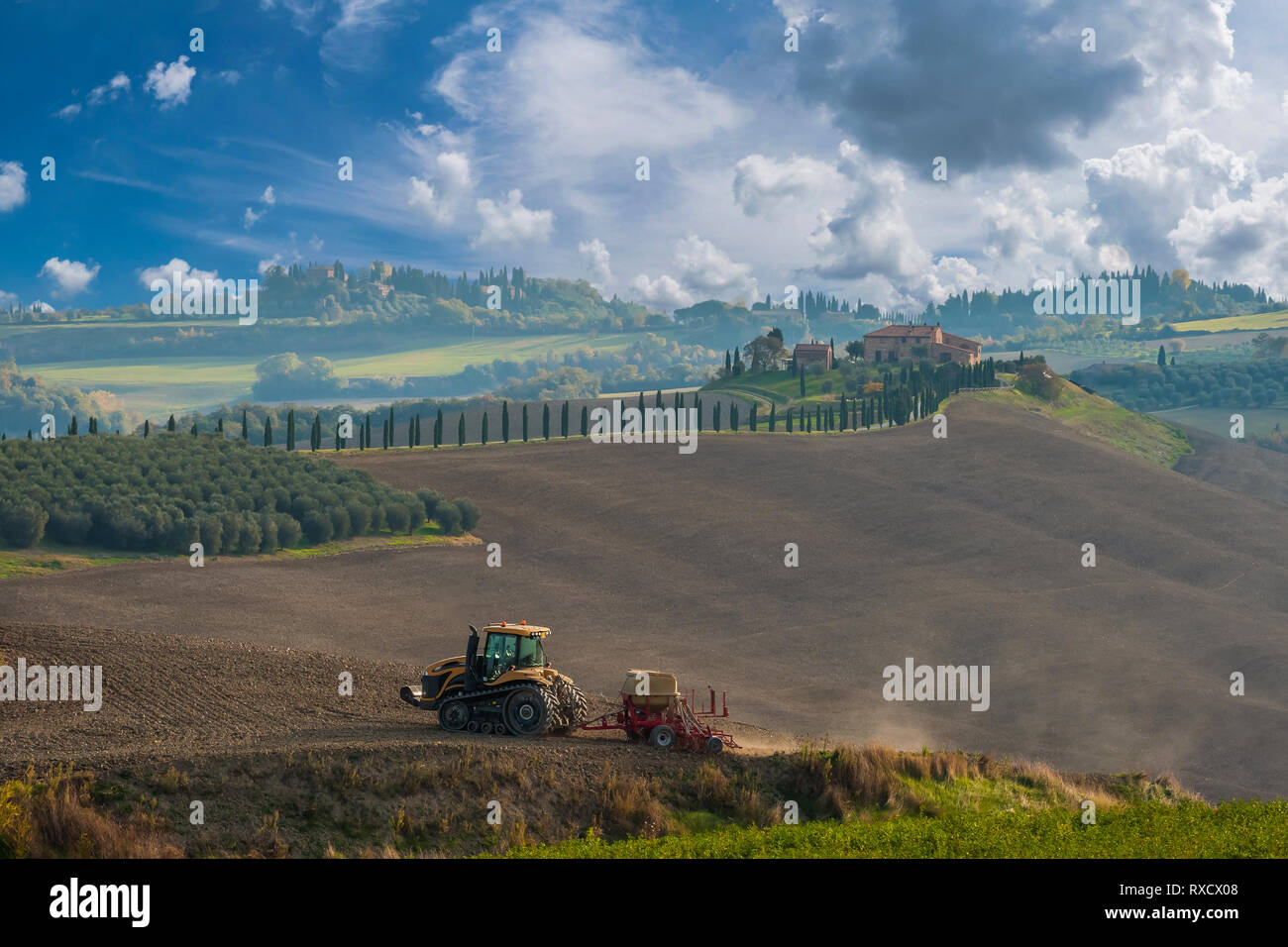 Agricultural landscape with tractor cultivates a field. Beautiful farmland, husbandry view - Stock Image