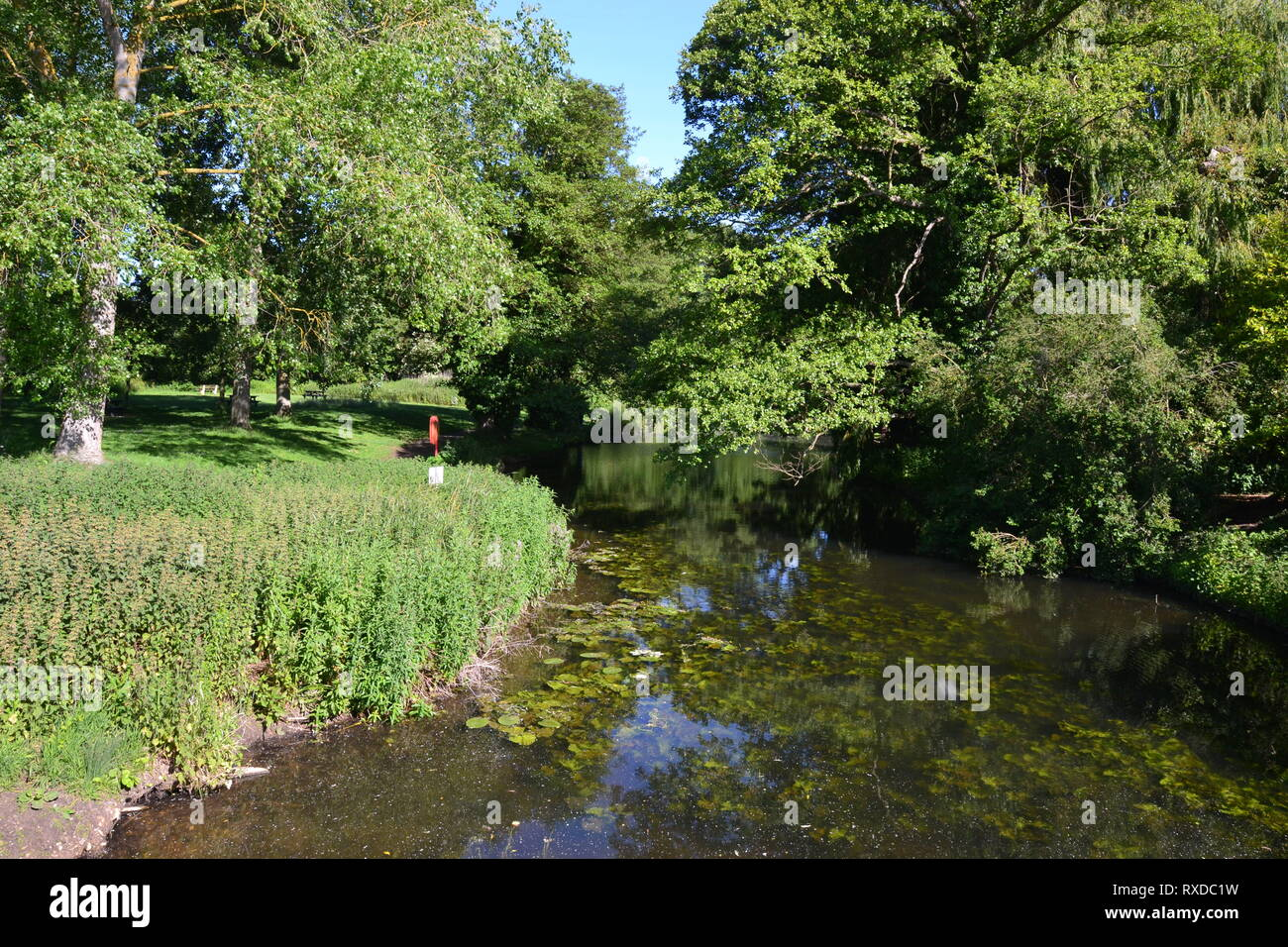 The River Box at Polstead, Suffolk, UK - Stock Image
