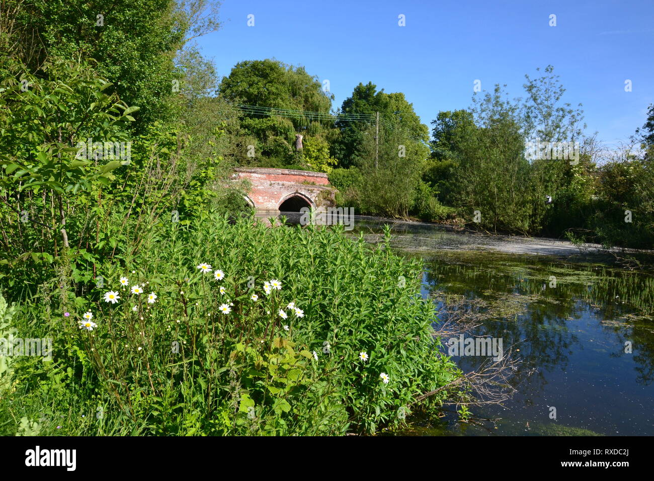 Bridge over the River Box Walk at Polstead, Suffolk, UK - Stock Image