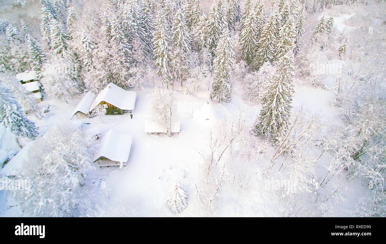 Aerial shot of the white snow in the forest. Trees and houses are filled and covered with thick snow and still its raining snow Stock Photo