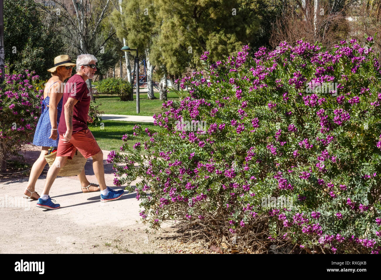 Valencia Turia Park. former river bed,a place for a lot of leisure activities, Couple head out for a walk in the park Stock Photo