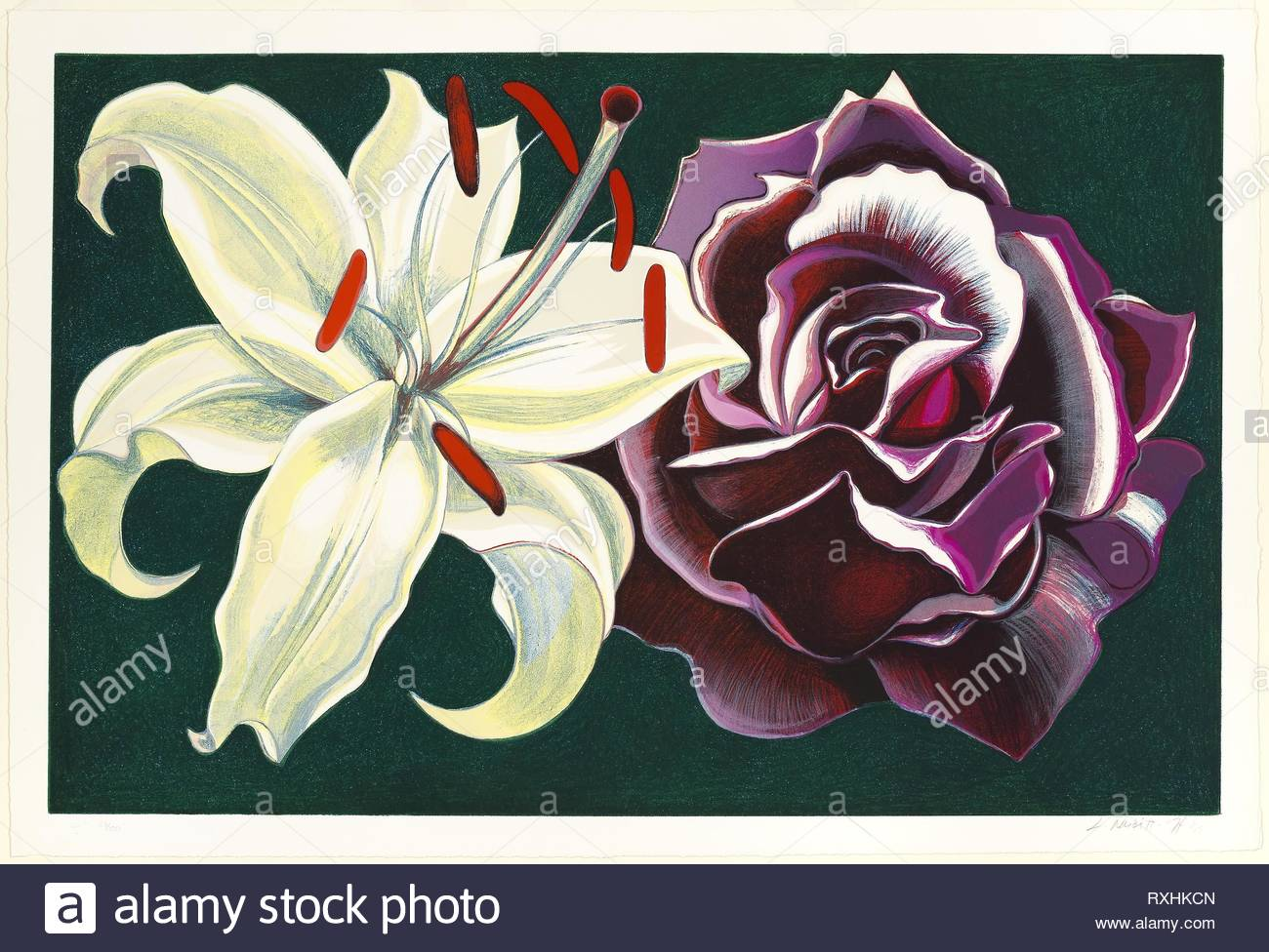 Lily and Rose. Lowell Nesbitt; American, 1933-1993. Date: 1974. Dimensions: 553 x 848 mm (image); 615 x 905 mm (sheet). Lithograph on white wove paper. Origin: United States. Museum: The Chicago Art Institute. - Stock Image
