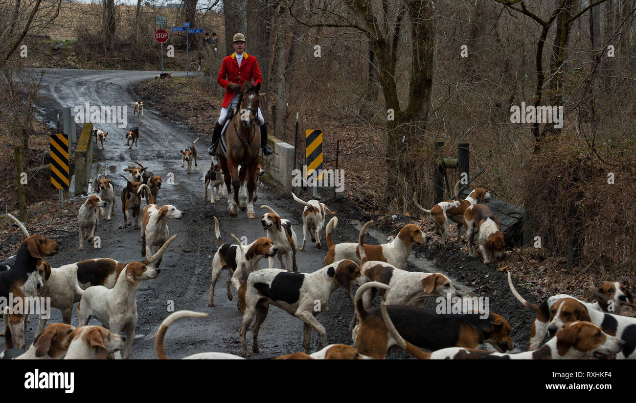 Hunting Club Stock Photos & Hunting Club Stock Images - Alamy