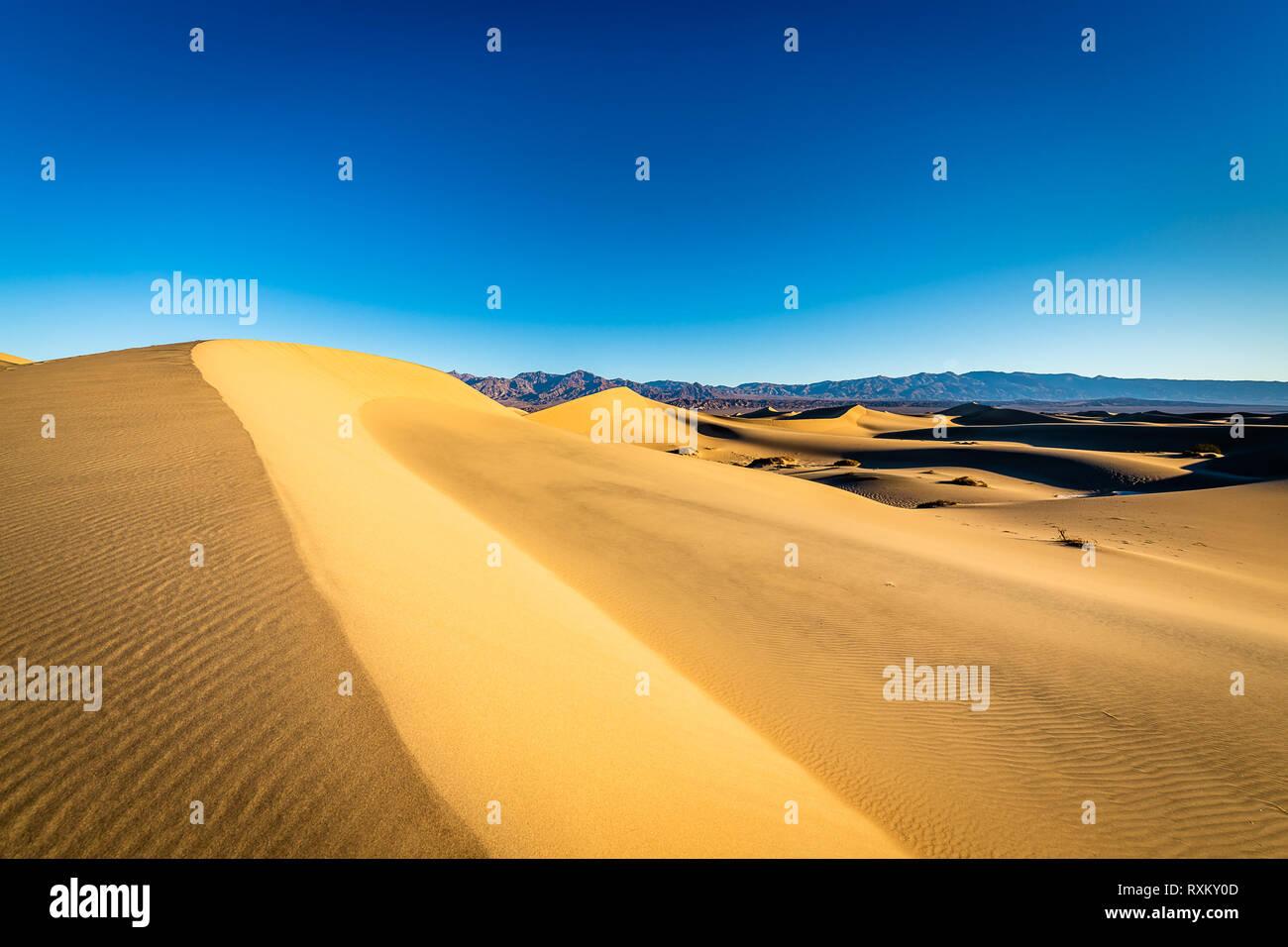 Mesquite Flat Sand Dunes at golden hour Stock Photo