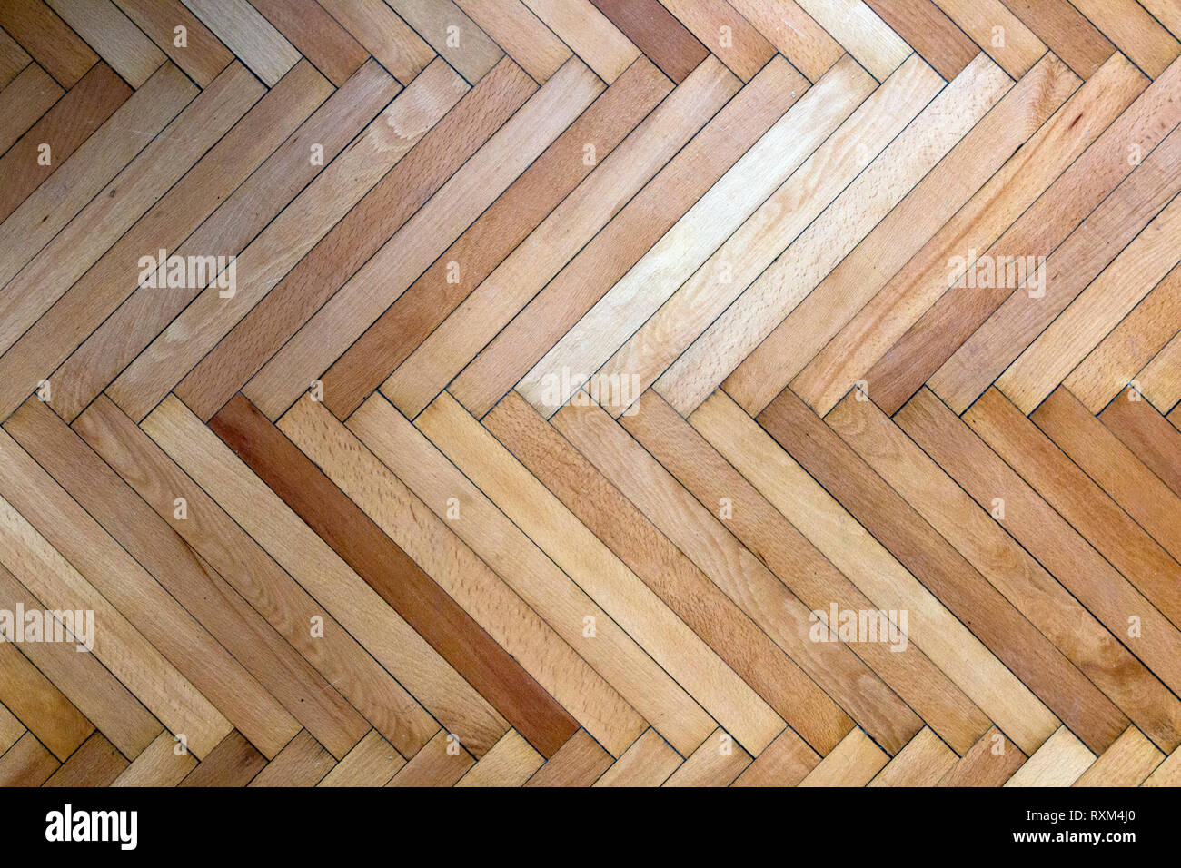 Wooden flooring in fishback design seen from top. A popular interior ground element of the past now mostly being replaced with less durable materials. Stock Photo