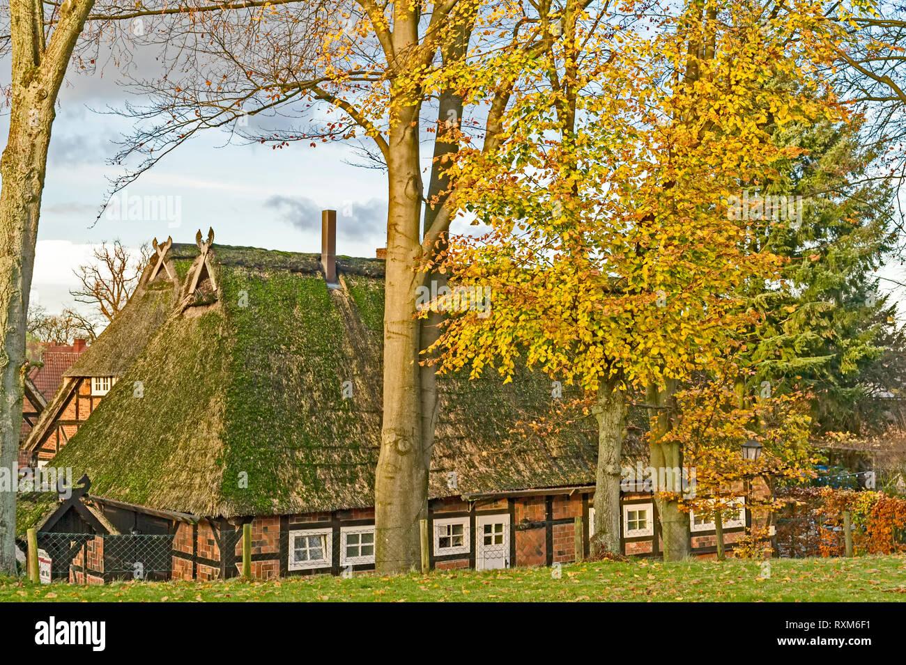 Farmhouse in Salzhausen (Lower Saxony); Bauernhof in Salzhausen (Niedersachsen - Stock Image
