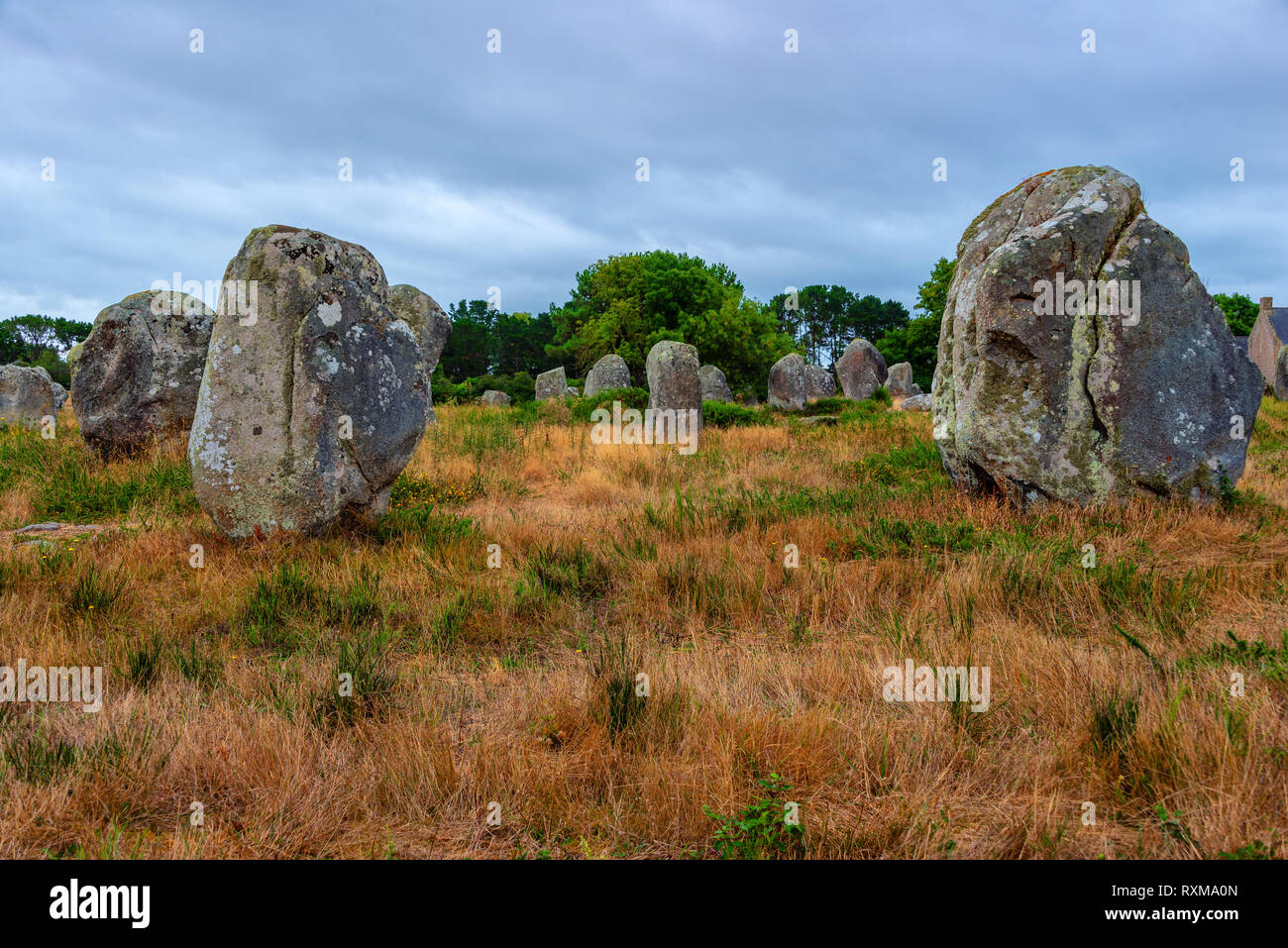 Carnac megaliths alignment in Brittany, France - Stock Image