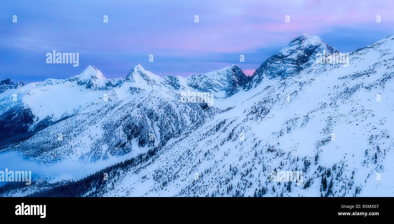 Morning in the Asulkan Valley, Rogers Pass, British Columbia, Canada - Stock Image