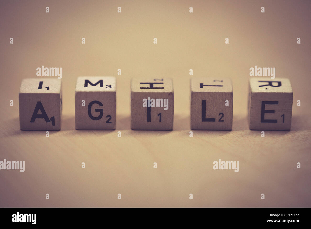 wooden cubes showing the word agile on a table, office - Stock Image