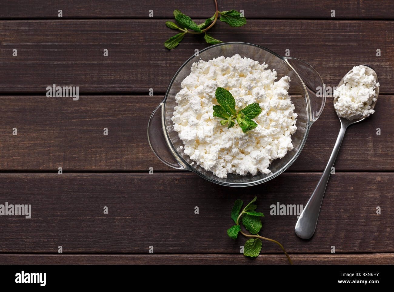 Homemade cottage cheese concept - Stock Image