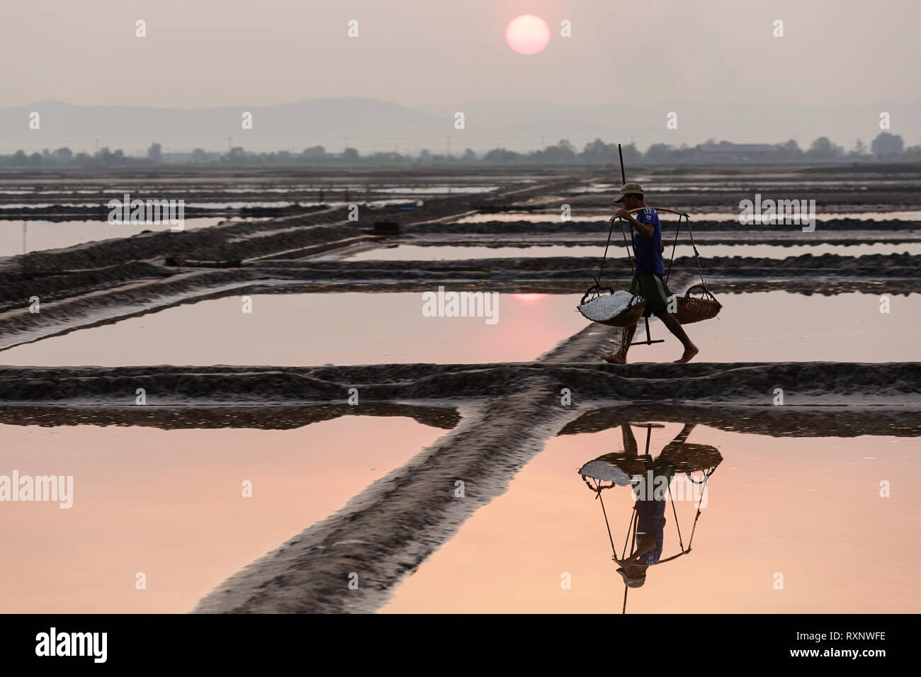 Cambodia, Kampot province, Kampot, salt harvest, man carries freshly