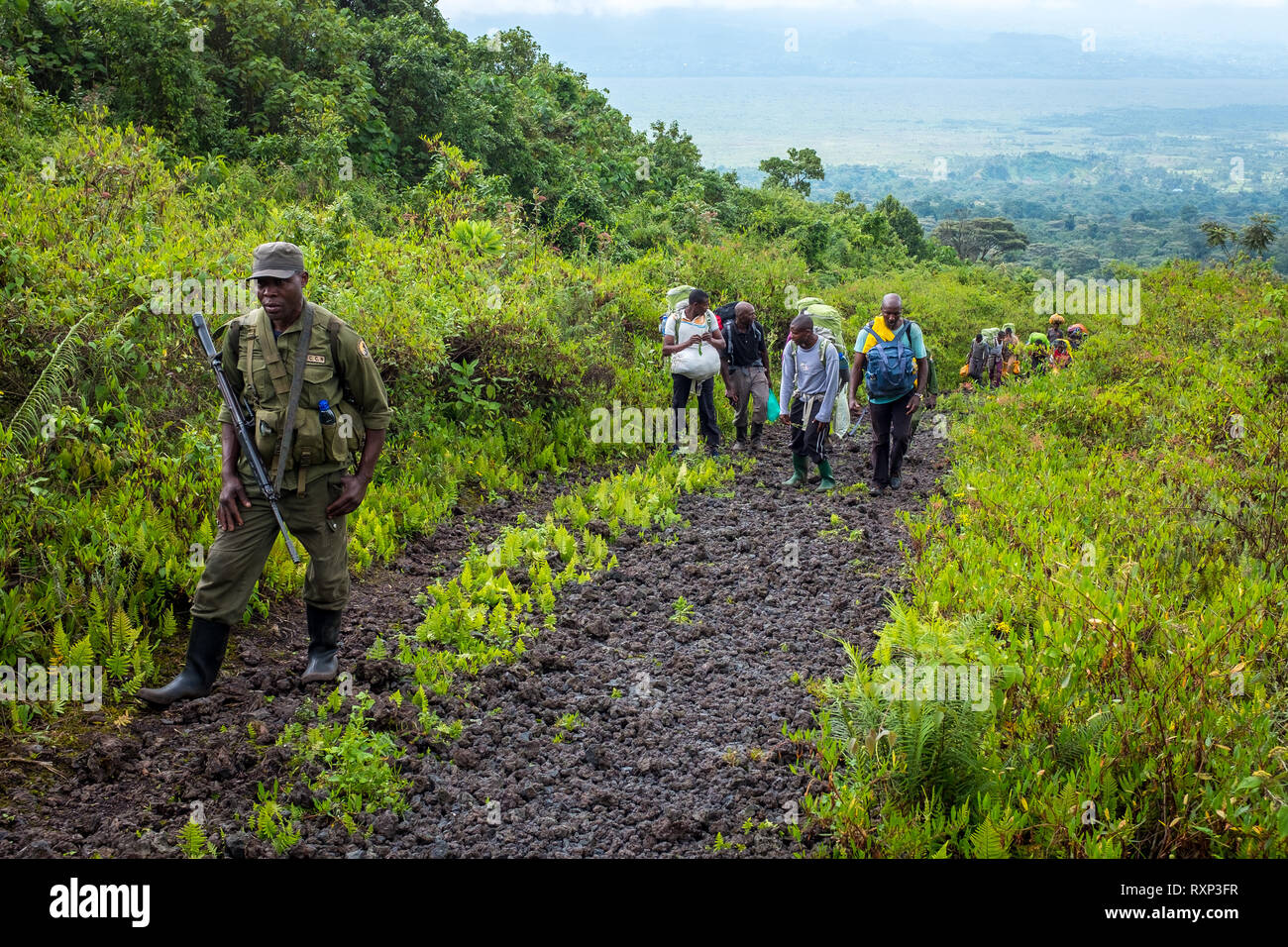 A park ranger leads a group hiking up Nyiragongo in Virunga National Park, Congo - Stock Image