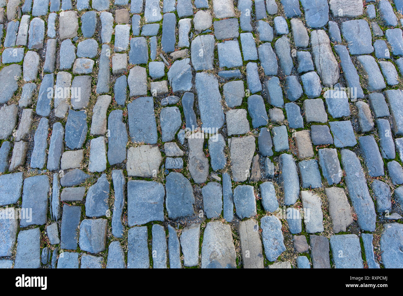 the medieval road is paved with cobblestones with grass between them - Stock Image