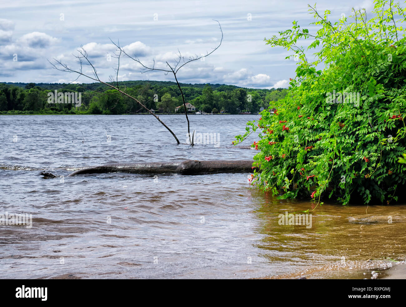 The Connecticut River flowing through East Haddam near Gillette Castle State Park in New London County. - Stock Image