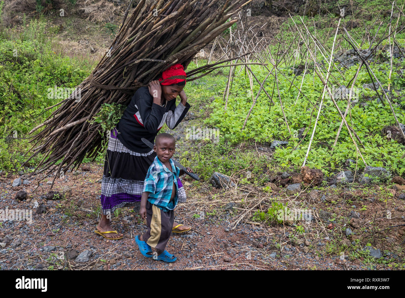 A woman loaded down with wood in Goma, Democratic Republic of Congo - Stock Image