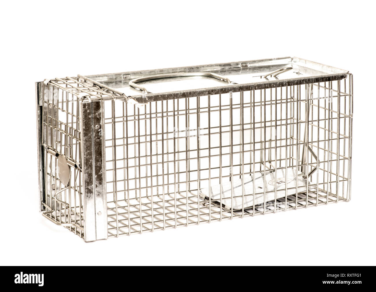 Humane rat trap made of galvanised steel mesh on white background. Closed - Stock Image