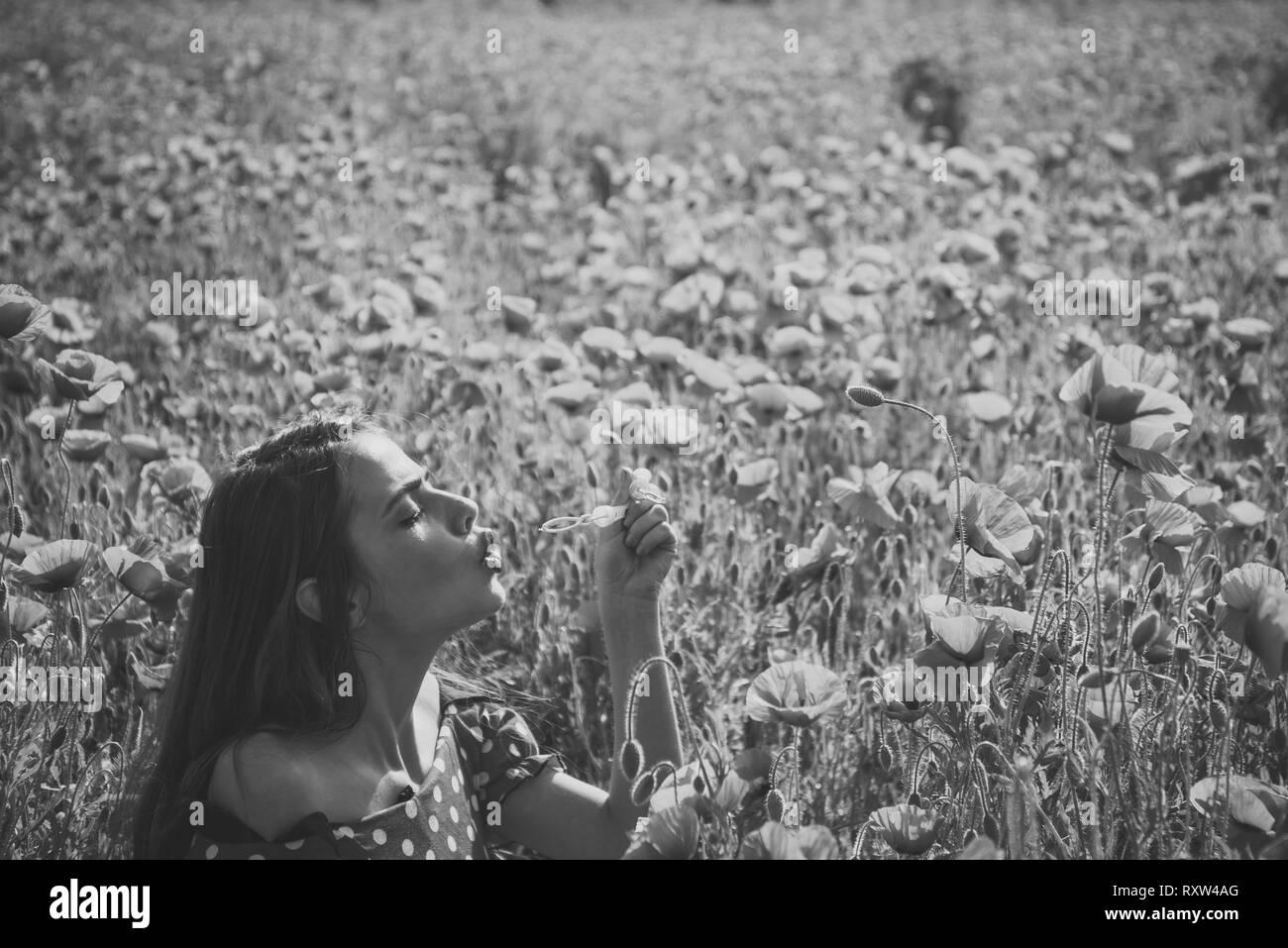 Opium poppy, youth, freshness, ecology, woman. - Stock Image
