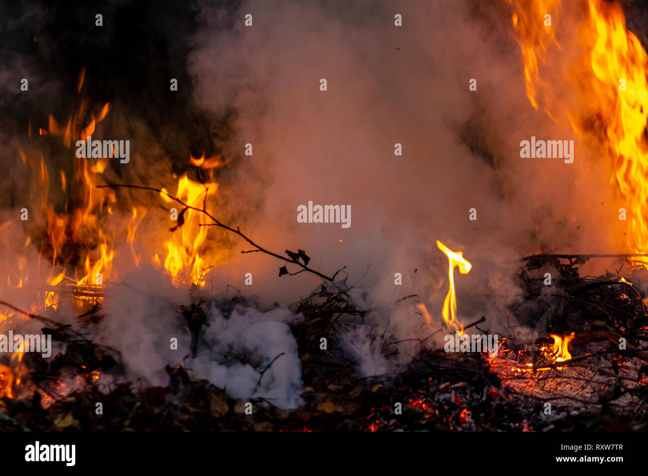 Forest wildfire at night whole area covered by flame and clouds of dark smoke. Distorted details due to high temperature and evaporation gases - Stock Image