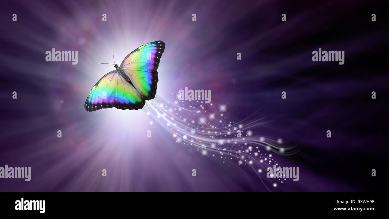 Multicoloured Butterfly taking flight into the Light - a large butterfly rising up with a trail of sparkles against a purple radiating background into - Stock Image