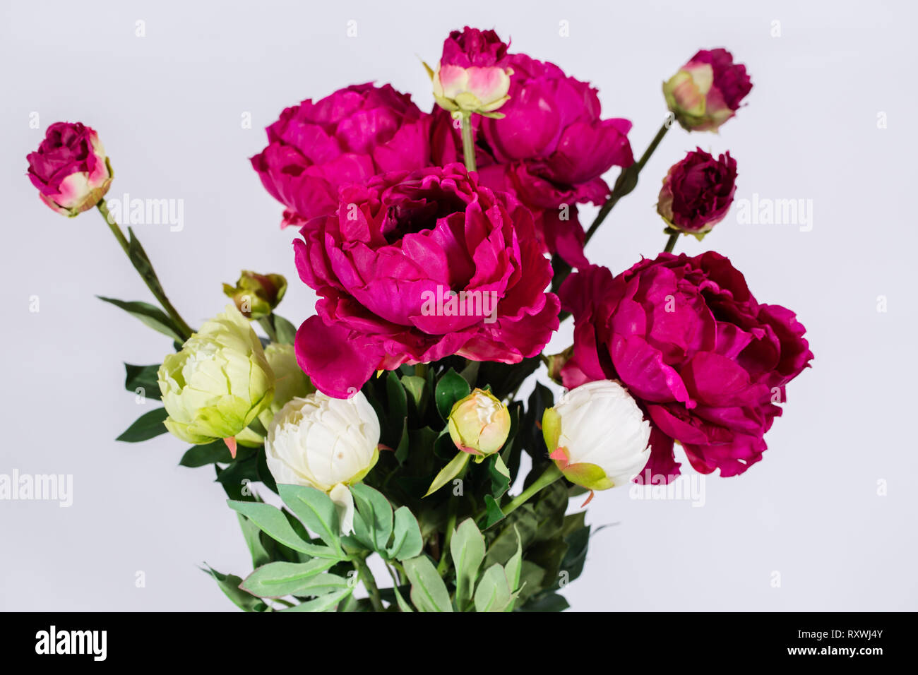 A Bouquet Of Beautiful Burgundy Peonies Stock Photo Alamy