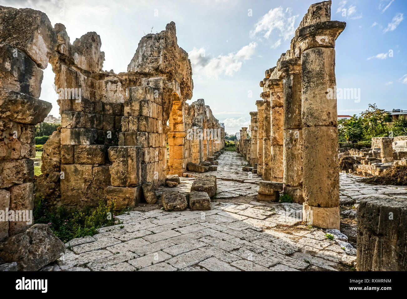 Tyre Hippodrome Ruins and Necropolis with Picturesque Pillars Leading Line - Stock Image