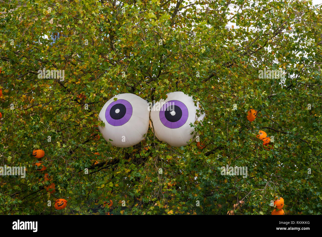 Two inflatable eyeballs installed in a tree for Halloween, St. Ann's Square, Manchester, England, UK - Stock Image