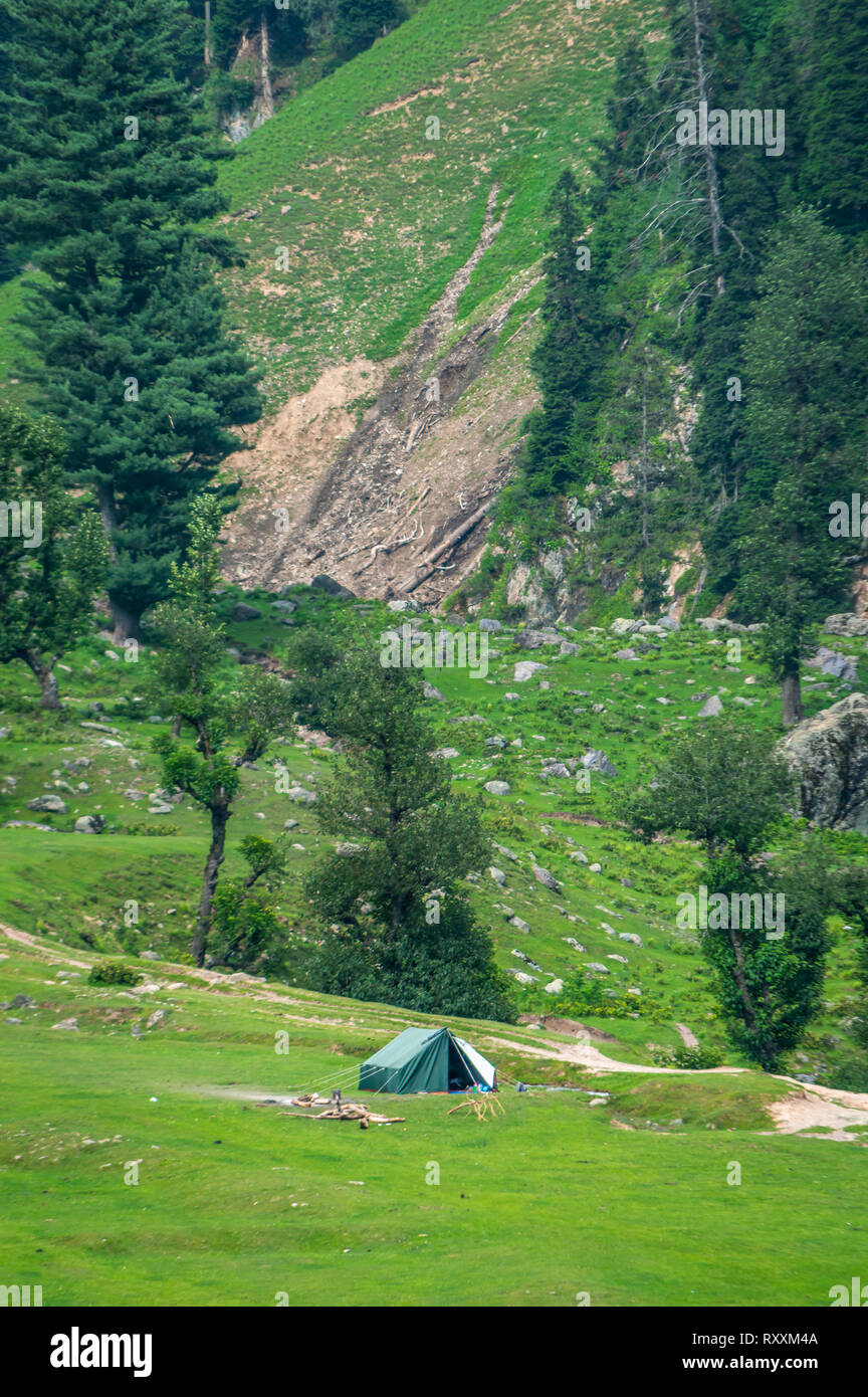 Portrait view of camping tent set up by a group of campers in the meadows of Aru, Pahalgam in Kashmir, India - Stock Image