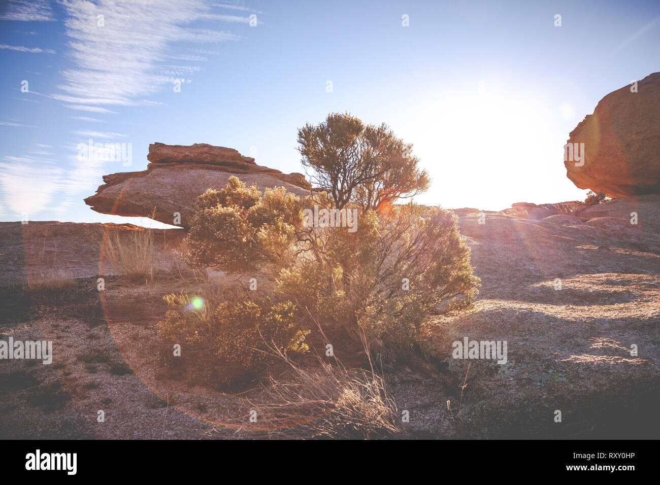 The vast desert landscape of Arizona gleams in the light of the golden sun. - Stock Image