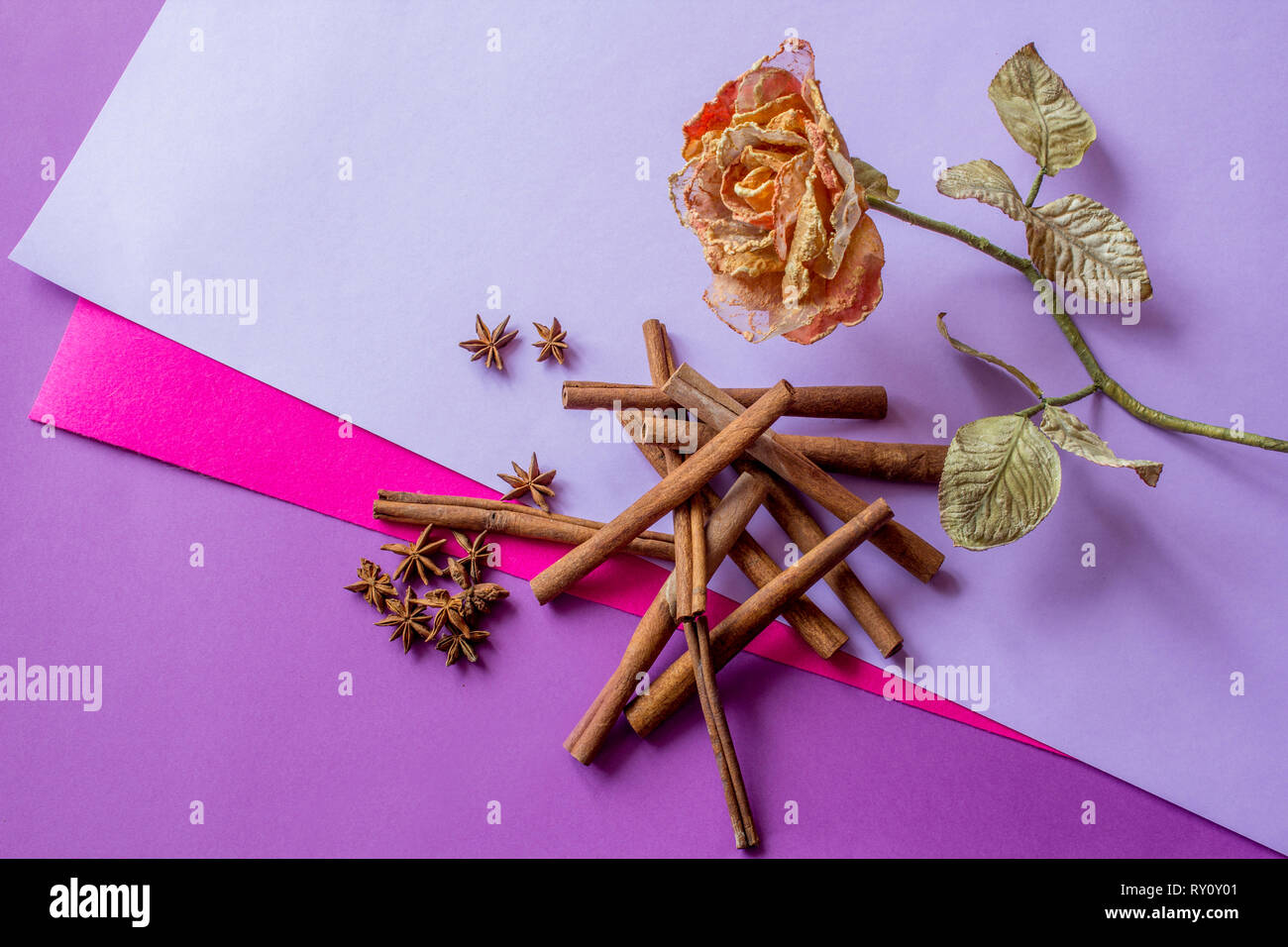 Still life of artificial rose, cinnamon sticks and anise stars lying on coloured background - Stock Image