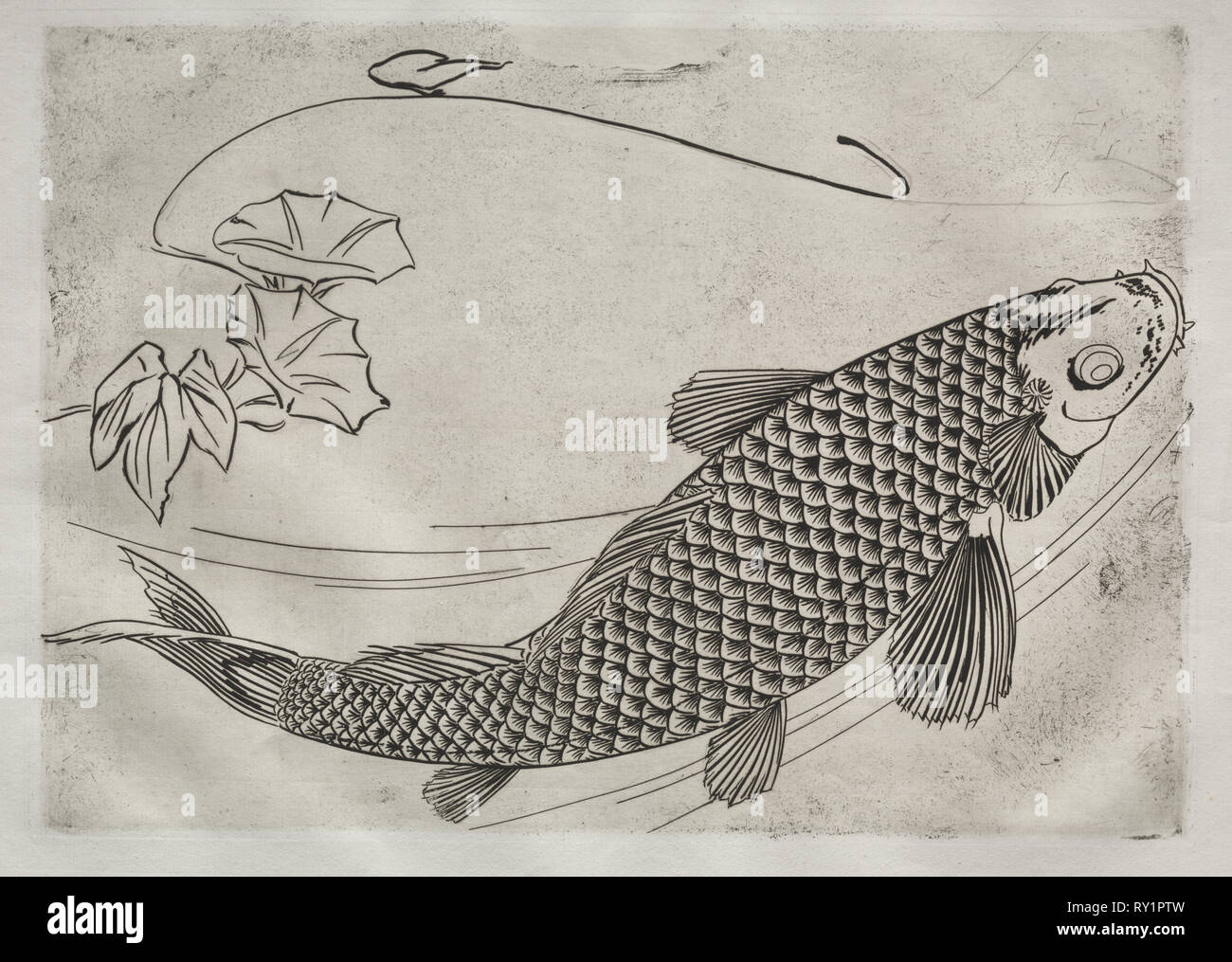 Dinner Service (Rousseau service): Large fish in a Japanese style (no. 19), 1866. Félix Bracquemond (French, 1833-1914). Etching; sheet: 35.4 x 48.2 cm (13 15/16 x 19 in.); platemark: 24.6 x 34.5 cm (9 11/16 x 13 9/16 in - Stock Image