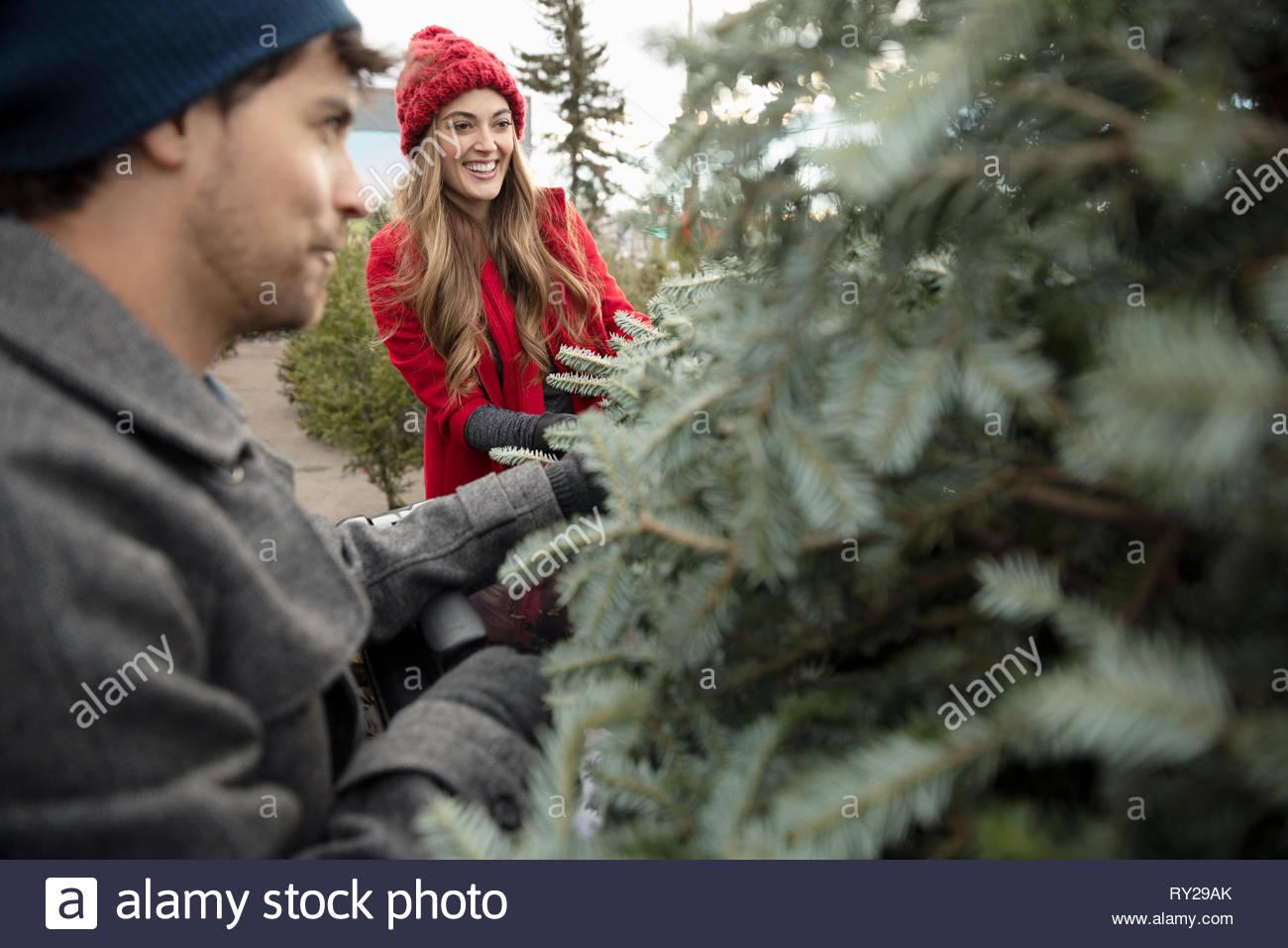 Couple shopping for christmas tree at christmas market - Stock Image
