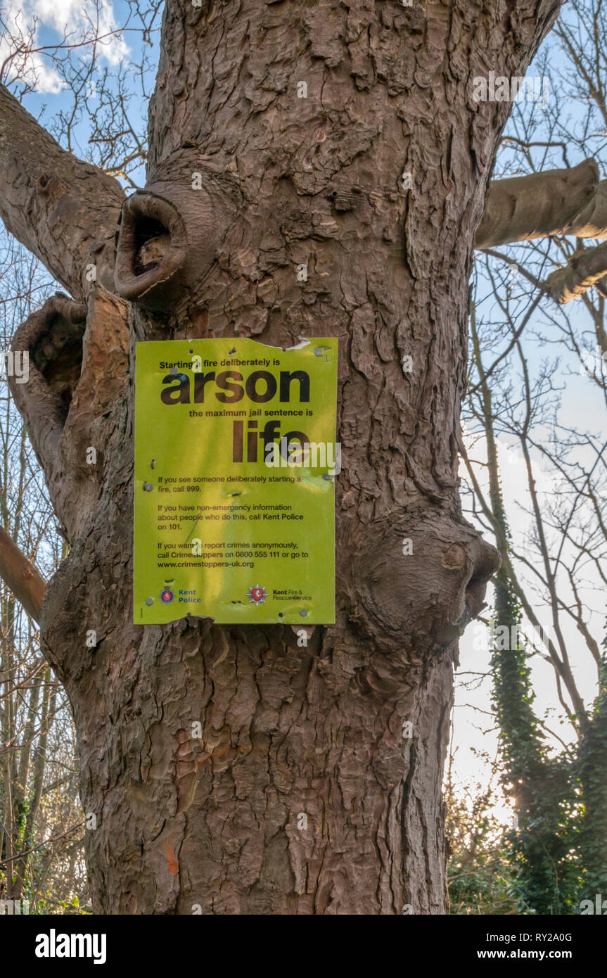 A sign on a tree in Mockett's Wood, Broadstairs, warns against starting fires. - Stock Image