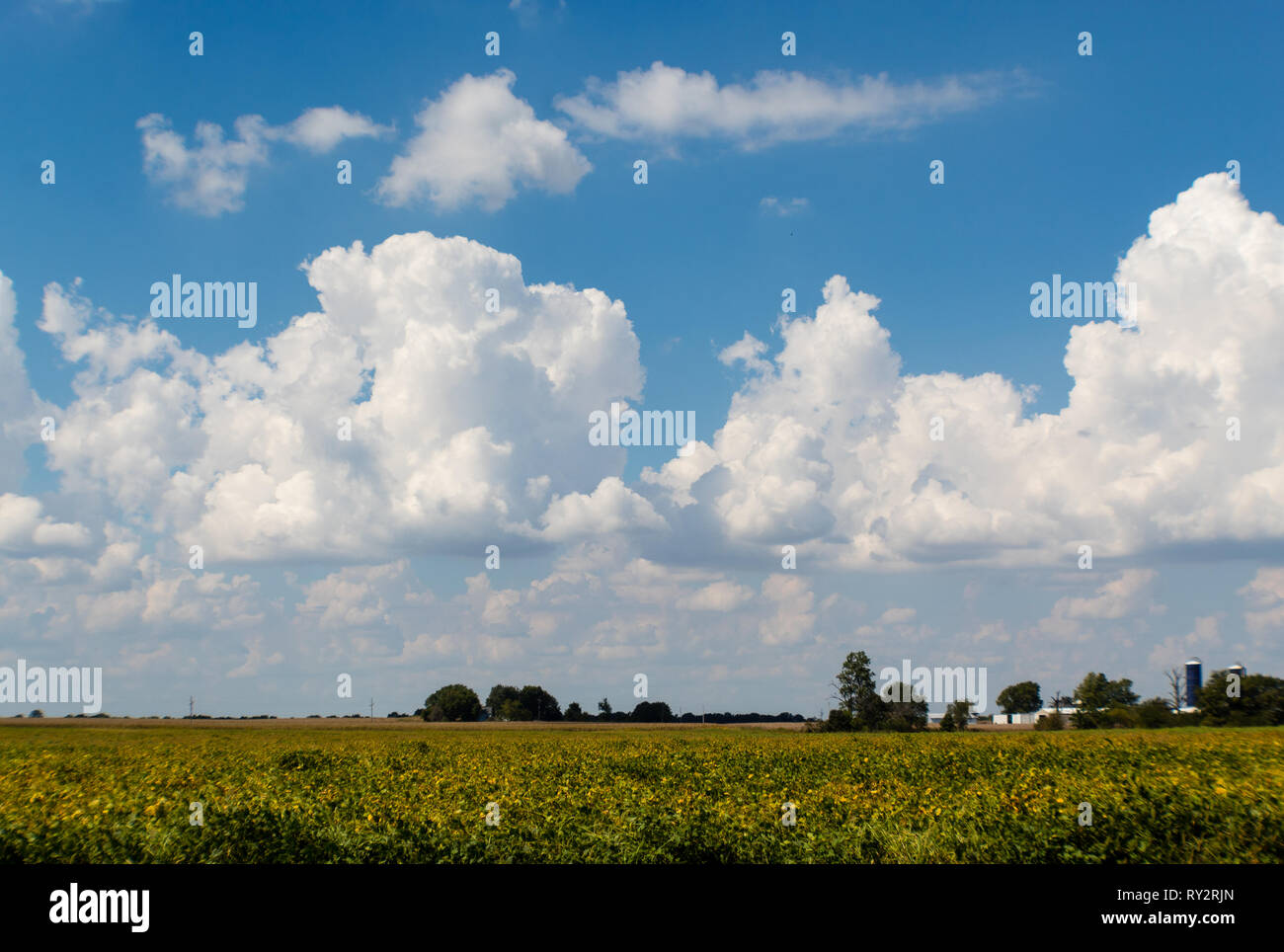 Beautiful blue summer sky with cumulus clouds over Illinois farmland - Stock Image