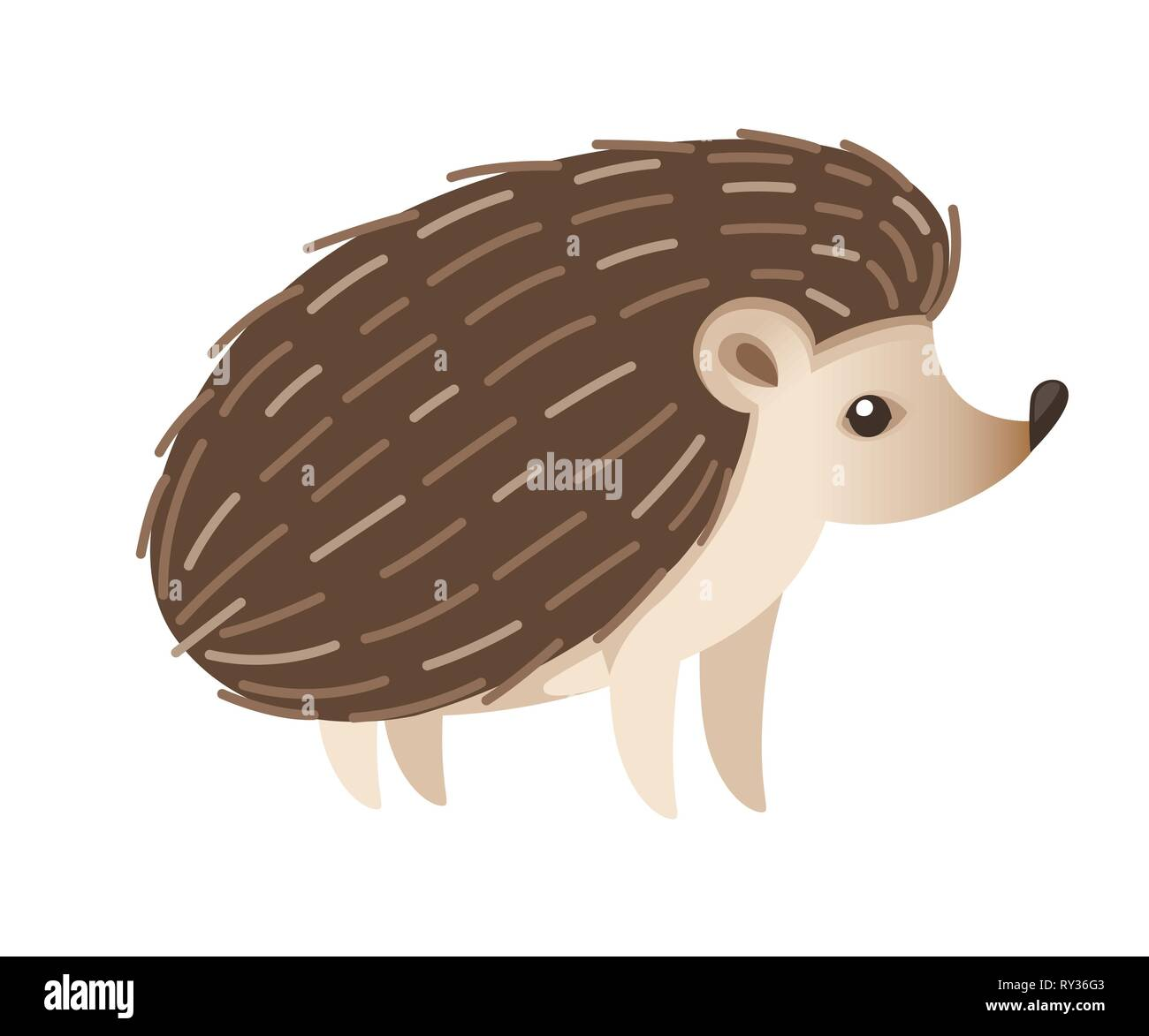 Cute hedgehog. Mammals subfamily Erinaceinae. Cartoon animal design. Flat vector illustration isolated on white background. Forest inhabitant. - Stock Image