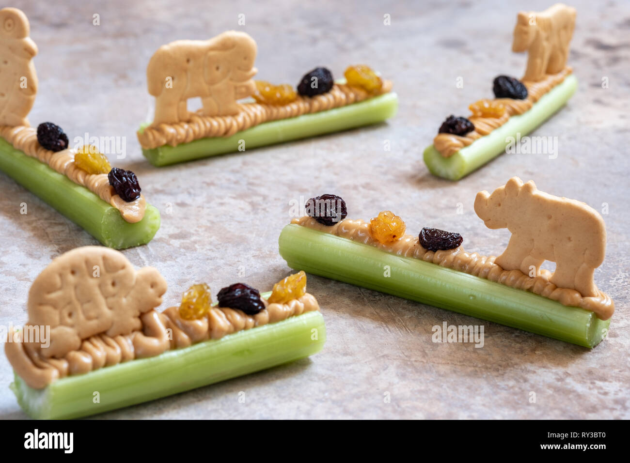Ants On A Log Snack With Celery Peanut Butter Raisins And Cookie Stock Photo Alamy