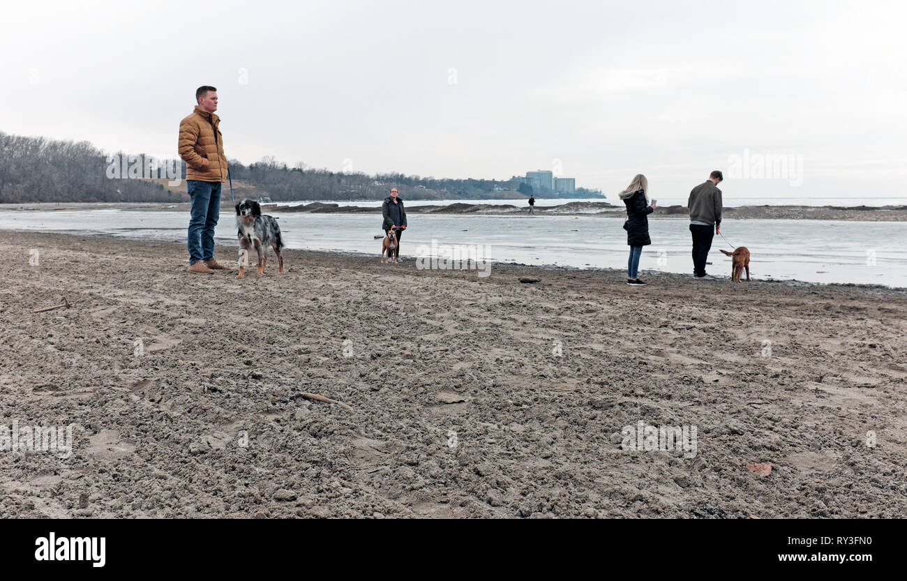 Dogs with their owners stand on Edgewater Beach on the shore of Lake Erie in Cleveland, Ohio, USA during winter. - Stock Image