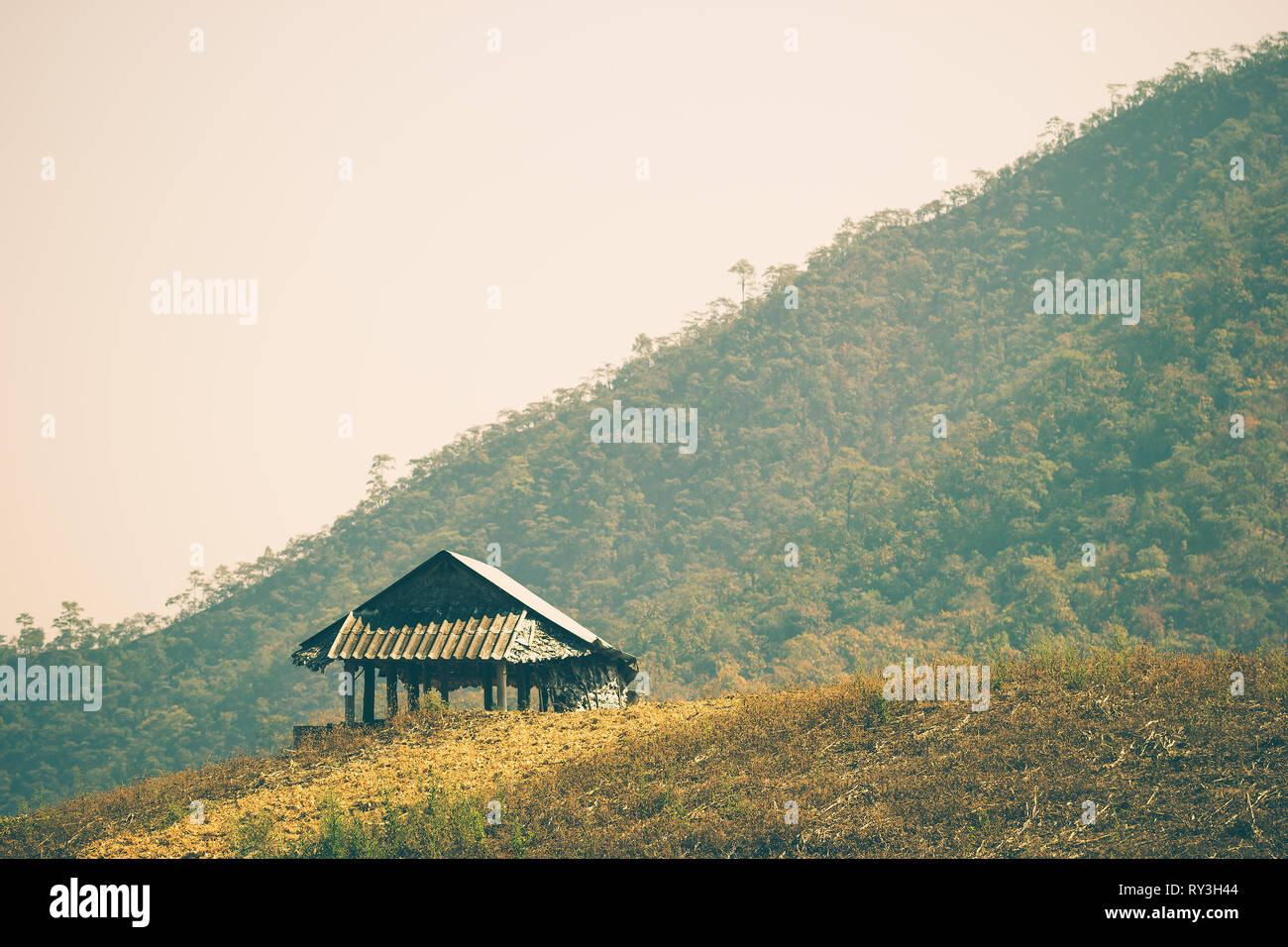 The hut among the mountains is surrounded by forests in summer. The concept of seclusion is truly blissful. Copy spaces for text. - Stock Image